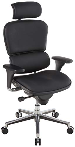 Ergohuman by Eurotech Seating Leather Swivel Chair,...