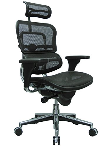 Ergohuman High Back Swivel Chair with Headrest, Black...